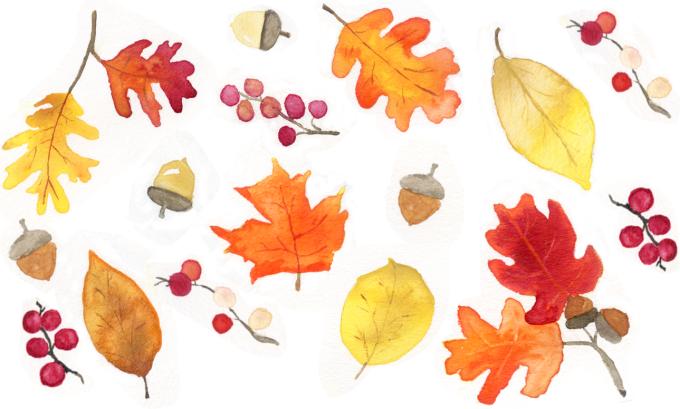 leavespatterngmid