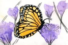 Monarch Butterfly on Yupo