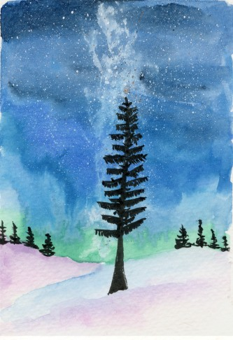 One Spruce Tree and the Milkyway