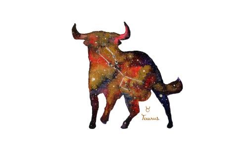 Taurus Charging