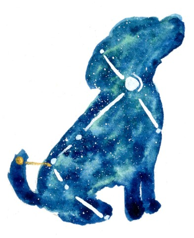 Canis Major 3