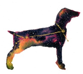 Canis Major 4