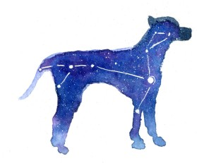 Canis Major 5