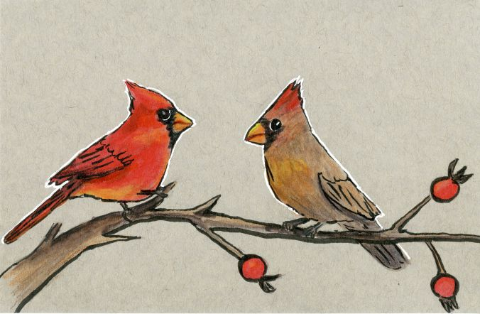 Cardinals and Rose-hips